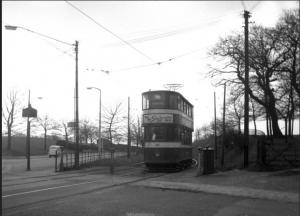 Tram nearing Canal Gardens terminus
